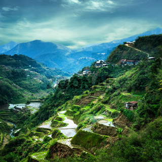 Rice terraces fields in Ifugao province. Banaue, Philippines