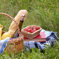 Picnic basket book and strawberry