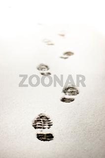 Bootprints in Fresh Snow