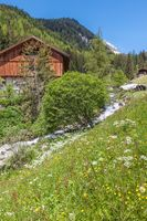 Alpine Hut and mountain stream