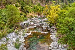 Alpine stream in France.