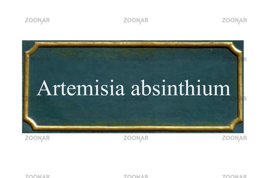 shield artemisia absinthium