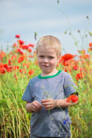 Smiling cute boy in field with red poppies
