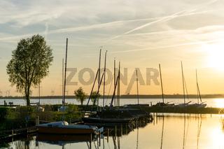 Landschaft am Dümmer See-90