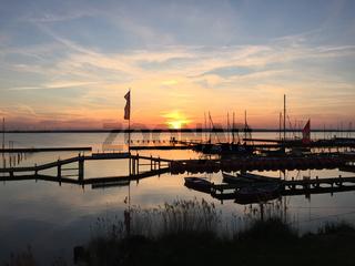 Landschaft am Dümmer See-103