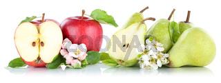 Apfel und Birne Äpfel Birnen Früchte rot grün Obst Freisteller freigestellt isoliert