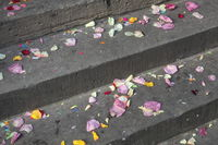 Wedding - Steps in front of the registry office
