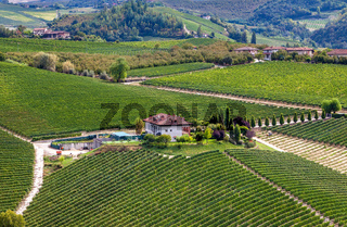 Winery and green vineyards on the hill in Italy.
