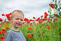 Happy little boy in field with red poppies