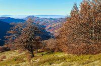 Autumn Carpathian view.