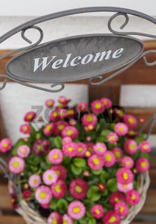 Blumentopf Dekoration - Welcome 2