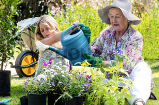 Grandmother and granddaughter watering the plants in the garden