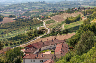 Rural house, vineyards and road in Italy.