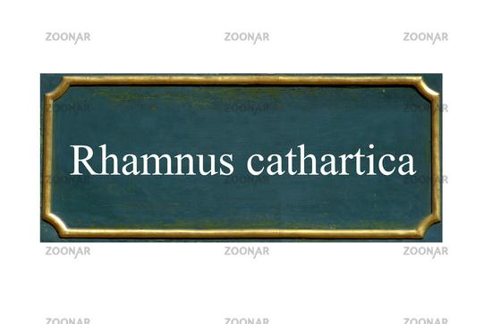 shield rhamnus cathartica, cross thorn