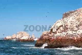 Ballestas Islands, Paracas National Reserve - 'Galapagos of Peru'