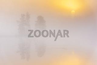 Morgenstimmung an einem Waldsee, Lappland