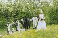 groom surprised his bride