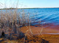 Spring flooding on the lake