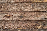 Timber wall with raw surface