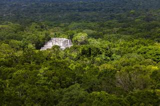 Maya-Ruinen in Calakmul