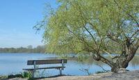 D--Niederrhein--an den Krickenbecker Seen.jpg