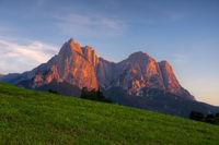 Schlern Alpengluehen - Schlern Alpine glow