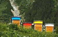 Bienenstöcke im Ferret-Tal