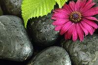 hot stone background