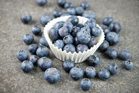 Blueberries in baking dish