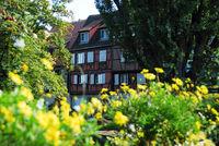 Fachwerkhaus und üppiger Blumenschmuck