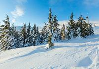 Morning winter mountain landscape (Carpathian).