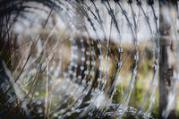 Closeup and details of a barbed wire fence.