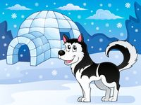 Husky dog theme image 3 - picture illustration.