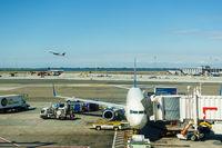 New York JFK airport