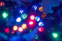Christmas holidays lights defocused background in the frame of fir twigs covered with snow