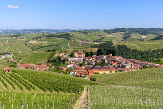 Small town and green vineyards in Italy.