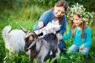 Happy mother and her daughter with baby goats