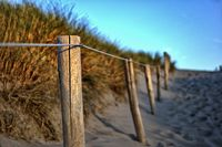 Crossing the dunes to the sea