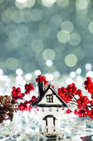 house with european holly on sparkles background