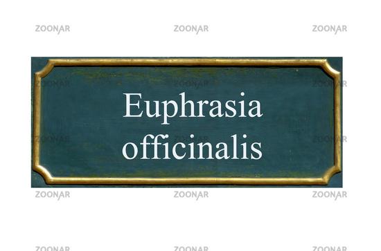 shield euphrasia officinalis