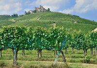 Wine Village near Asti,Piedmont,Italy
