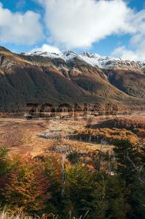 Autumn in Patagonia. Tierra del Fuego, Argentina side