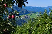 Proesels Schloss - Proesels castle