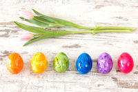 Colorful Easter eggs with pink