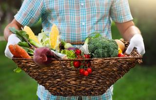 Basket filled fresh vegetables in hands of a man