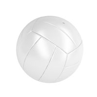 White volleyball ball