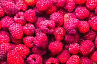 raspberries close up