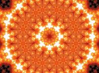Gerber flower abstract pattern