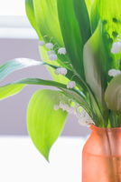 Tender bouquet of lily of the Valley