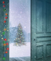 Rustic door opening outside to a snowy winter scen
